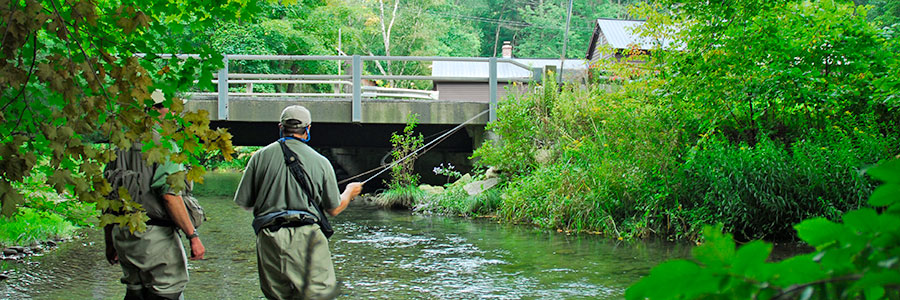 Fly Fishing Guide Vermont New York Michigan